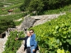 rene favre and fils vineyards